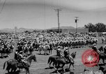 Image of Reno Rodeo Nevada United States USA, 1957, second 8 stock footage video 65675070401