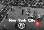 Image of dog show New York United States USA, 1952, second 1 stock footage video 65675070426