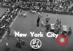 Image of dog show New York United States USA, 1952, second 4 stock footage video 65675070426