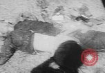 Image of Tet Offensive Saigon Vietnam, 1968, second 7 stock footage video 65675070507