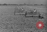 Image of new methods of farming United States USA, 1946, second 3 stock footage video 65675070532