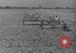 Image of new methods of farming United States USA, 1946, second 4 stock footage video 65675070532