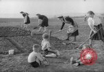 Image of grow vegetables Germany, 1946, second 2 stock footage video 65675070619
