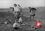 Image of grow vegetables Germany, 1946, second 4 stock footage video 65675070619