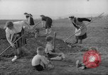 Image of grow vegetables Germany, 1946, second 6 stock footage video 65675070619