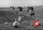 Image of grow vegetables Germany, 1946, second 8 stock footage video 65675070619