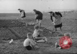 Image of grow vegetables Germany, 1946, second 9 stock footage video 65675070619