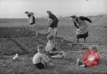 Image of grow vegetables Germany, 1946, second 10 stock footage video 65675070619