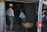 Image of rehabilitation of natives Okinawa Ryukyu Islands, 1945, second 2 stock footage video 65675070758