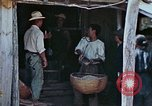 Image of rehabilitation of natives Okinawa Ryukyu Islands, 1945, second 4 stock footage video 65675070758