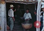 Image of rehabilitation of natives Okinawa Ryukyu Islands, 1945, second 5 stock footage video 65675070758