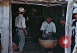 Image of rehabilitation of natives Okinawa Ryukyu Islands, 1945, second 6 stock footage video 65675070758