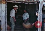 Image of rehabilitation of natives Okinawa Ryukyu Islands, 1945, second 7 stock footage video 65675070758