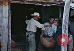 Image of rehabilitation of natives Okinawa Ryukyu Islands, 1945, second 12 stock footage video 65675070758