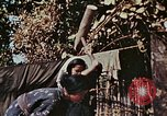 Image of rehabilitation of natives Okinawa Ryukyu Islands, 1945, second 10 stock footage video 65675070759