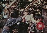 Image of rehabilitation of natives Okinawa Ryukyu Islands, 1945, second 12 stock footage video 65675070759