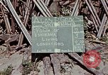 Image of living conditions of natives Ishikawa Okinawa Japan, 1945, second 6 stock footage video 65675070760