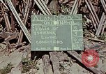 Image of living conditions of natives Ishikawa Okinawa Japan, 1945, second 9 stock footage video 65675070760