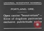 Image of beauty treatments for dogs Portland Oregon USA, 1931, second 2 stock footage video 65675070930