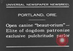 Image of beauty treatments for dogs Portland Oregon USA, 1931, second 6 stock footage video 65675070930