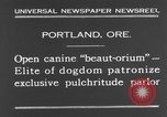 Image of beauty treatments for dogs Portland Oregon USA, 1931, second 11 stock footage video 65675070930