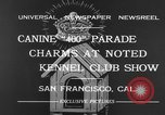 Image of Golden Gate Kennel Club dog show San Francisco California USA, 1932, second 5 stock footage video 65675070937