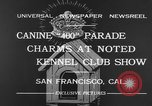 Image of Golden Gate Kennel Club dog show San Francisco California USA, 1932, second 6 stock footage video 65675070937
