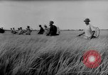 Image of Natural resources of South Vietnam South East Asia, 1960, second 7 stock footage video 65675071034