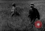 Image of Natural resources of South Vietnam South East Asia, 1960, second 9 stock footage video 65675071034