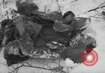 Image of Bodies of dead German soldiers in snow Ambleve Belgium, 1945, second 11 stock footage video 65675071159