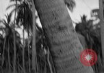 Image of amphibious landing Palau Islands, 1944, second 8 stock footage video 65675071179