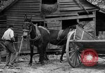 Image of Negro farmers United States USA, 1931, second 2 stock footage video 65675071224