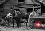 Image of Negro farmers United States USA, 1931, second 4 stock footage video 65675071224