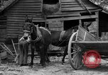 Image of Negro farmers United States USA, 1931, second 5 stock footage video 65675071224