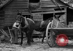 Image of Negro farmers United States USA, 1931, second 6 stock footage video 65675071224