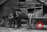 Image of Negro farmers United States USA, 1931, second 8 stock footage video 65675071224
