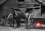 Image of Negro farmers United States USA, 1931, second 9 stock footage video 65675071224