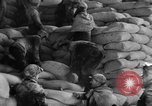 Image of bread Italy, 1944, second 10 stock footage video 65675071256