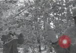 Image of 101st Airborne Division Bastogne Belgium, 1945, second 3 stock footage video 65675071302