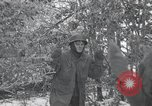 Image of 101st Airborne Division Bastogne Belgium, 1945, second 4 stock footage video 65675071302
