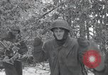 Image of 101st Airborne Division Bastogne Belgium, 1945, second 6 stock footage video 65675071302