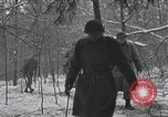 Image of 101st Airborne Division Bastogne Belgium, 1945, second 4 stock footage video 65675071303