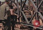 Image of Seabees Pacific Theater, 1945, second 8 stock footage video 65675071381