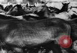 Image of collective farms Ukraine, 1943, second 7 stock footage video 65675071391