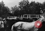 Image of collective farms Ukraine, 1943, second 11 stock footage video 65675071391