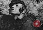 Image of German infantry Soviet Union, 1943, second 12 stock footage video 65675071393