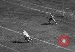 Image of American football match Atlanta Georgia USA, 1955, second 12 stock footage video 65675071441