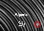 Image of massacre Algeria, 1957, second 5 stock footage video 65675071459