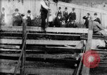Image of Bucking Bronco West Orange New Jersey USA, 1894, second 5 stock footage video 65675071499