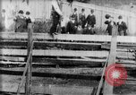 Image of Bucking Bronco West Orange New Jersey USA, 1894, second 6 stock footage video 65675071499